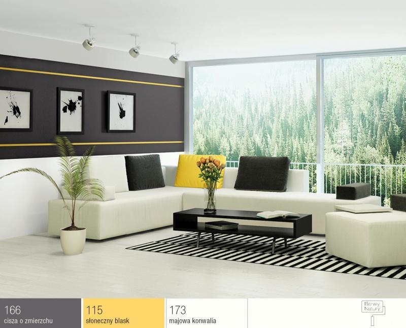 Dom w stylu black and white