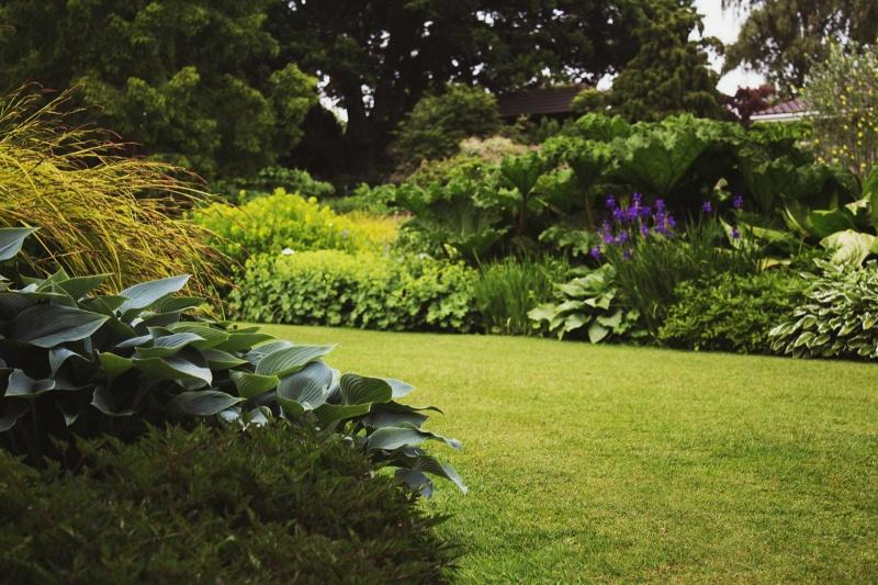 Podstawy Komponowania Rabat Kwietnych Wnętrze I Ogród