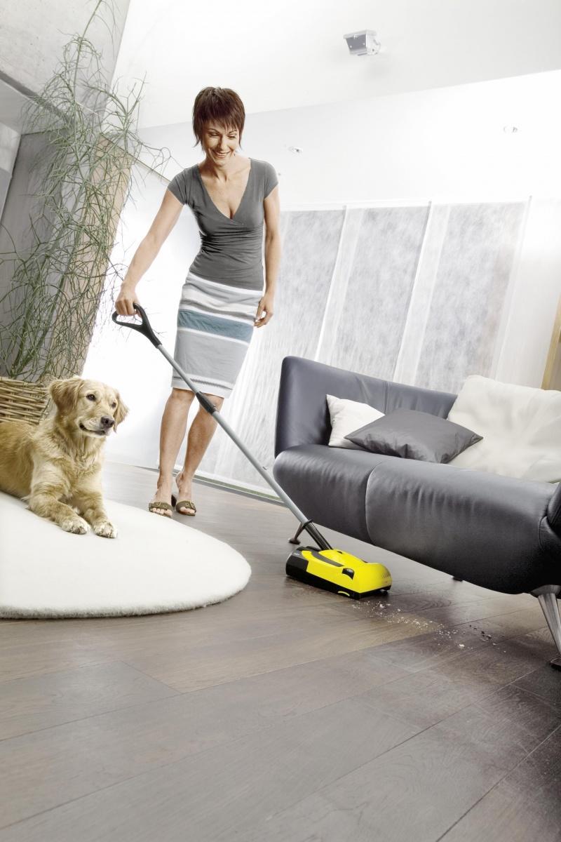 Sprzątanie w domu pełnym zwierząt