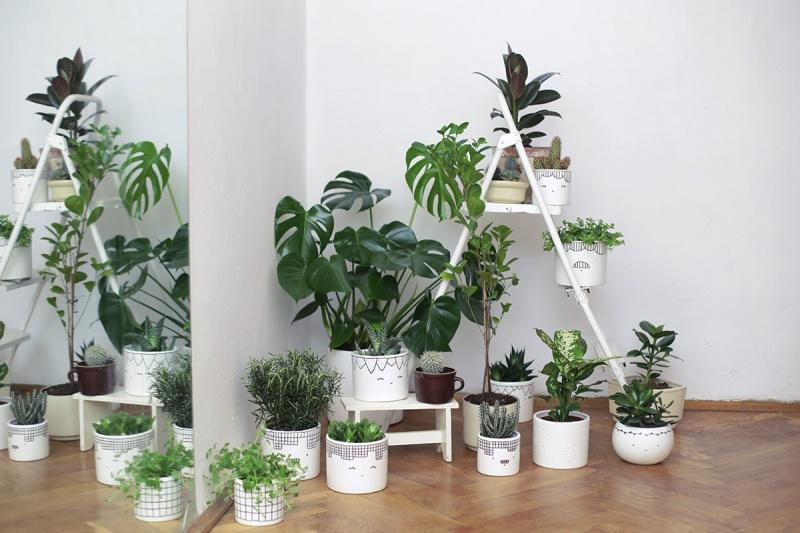 Urban gardening, czyli ogród w wielkim mieście