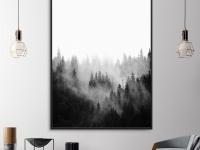 forest-landscape